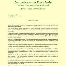 Les Fruitiers Rares : le camérisier du Kamtchatka