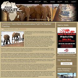 Cameroon: Hulot Wants Internationalised Fight For Elephant Poaching