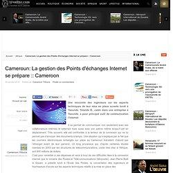 Cameroun: La gestion des Points d'échanges Internet se prépare :: Cameroon