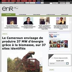 Le Cameroun envisage de produire 37 MW d'énergie grâce à la biomasse, sur 37 sites identifiés