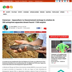 Cameroun-Info.Net: Le Portail du Cameroun