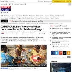 """CAMEROUN. Des """"sacs-marmites"""" pour remplacer le charbon et le gaz"""