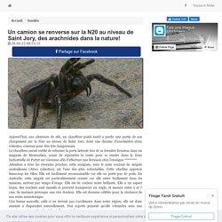 Un camion se renverse sur la N20 au niveau de Saint Jory, des arachnides dans la nature!