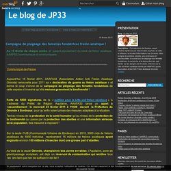 Campagne de piégeage des femelles fondatrices frelon asiatique ! - Le blog de JP33