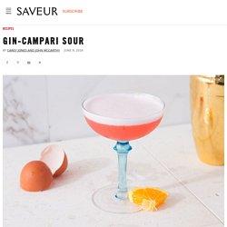 Gin-Campari Sour Cocktail Recipe