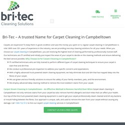 Excellent Carpet Cleaning in Campbelltown
