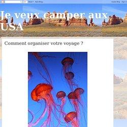 Je veux camper aux USA: Comment organiser votre voyage ?