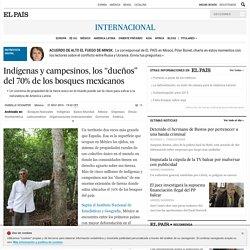 """Indígenas y campesinos, los """"dueños"""" del 70% de los bosques mexicanos"""
