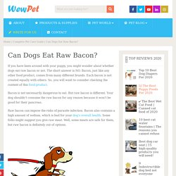Can Dogs Eat Raw Bacon? - WewPet
