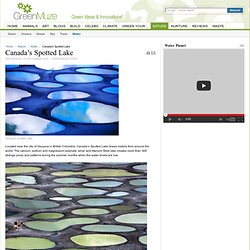 Canada's Spotted Lake