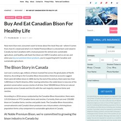 Buy And Eat Canadian Bison For Healthy Life - Aigapda