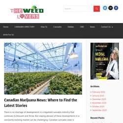 Canadian Marijuana News: Where to Find the Latest Stories - The Weed Lovers