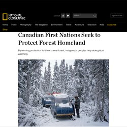 Canadian First Nations Seek to Protect Forest Homeland