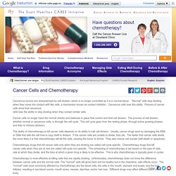Cancer Cells and Chemotherapy - What is Chemotherapy? - Chemocare