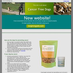 Cancer Cure for Dogs