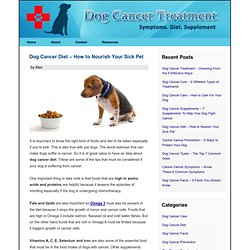 Dog Cancer Diet - How to Nourish Your Sick Pet