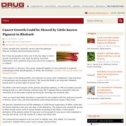 la progression du cancer pourrait etre ralentie par un pigment de la rhubarbe