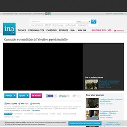 [Cannabis et candidats à l'élection présidentielle], vidéo [Cannabis et candidats à l'élection présidentielle], vidéo Economie et société Vie sociale - Archives vidéos Economie et société Vie sociale