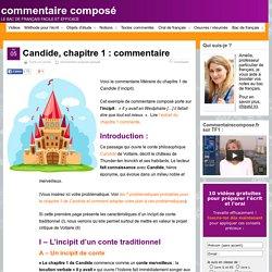 Candide, chapitre 1 : commentaire