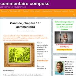 Candide chapitre 19