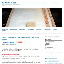 Let's Make a Candyboard for Winter Feeding - Overwintering Honey Bees