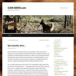 Blog utilisant WordPress