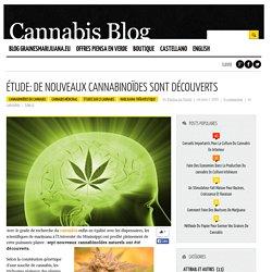 Étude: De nouveaux cannabinoïdes sont découverts