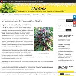 Les cannabinoïdes et leurs propriétés médicales - Blog du Growshop Alchimia