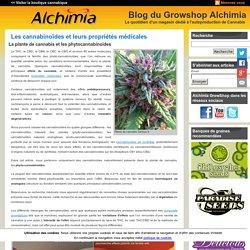 Les cannabinoïdes et leurs propriétés médicales