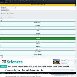 Cannabis chez les adolescents : le QI en fumée