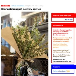 Cannabis bouquet delivery service / Boing Boing