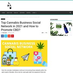 Top Cannabis Business Social Network in 2021 and How to Promote CBD?