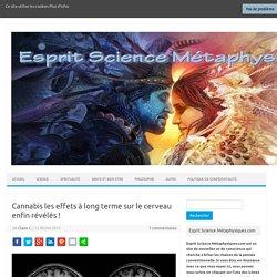 Cannabis les effets à long terme sur le cerveau enfin révélés!