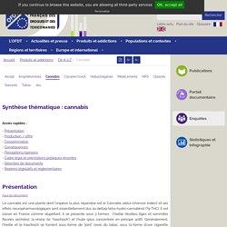 Cannabis - Synthèse des connaissances - OFDT