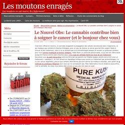 Le Nouvel Obs: Le cannabis contribue bien à soigner le cancer (et le bonjour chez vous)