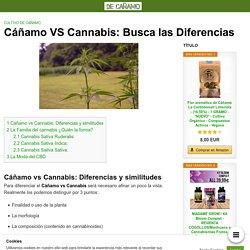 Cáñamo VS Cannabis: □ Busca las Diferencias