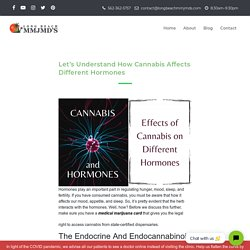 How Cannabis Affects Different Hormones in The Body