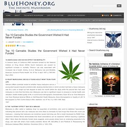 Top 10 Cannabis Studies the Government Wished it Had Never Funded « bluehoney.org