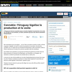 Cannabis: l'Uruguay légalise la production et la vente