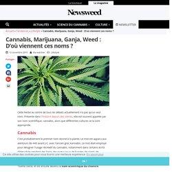 Cannabis, Marijuana, Ganja, Weed : D'où viennent ces noms ? - Newsweed