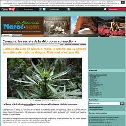 Cannabis: les secrets de la «Moroccan connection»