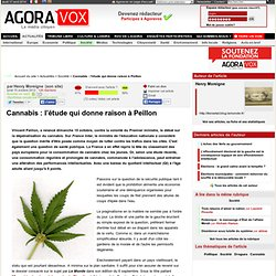 Cannabis : l'étude qui donne raison à Peillon