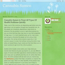Cannabis Samen: Cannabis Samen to Treat All Types Of Health Problems Quickly