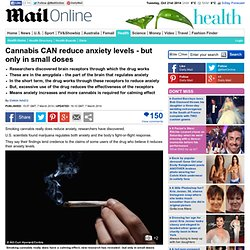 Cannabis CAN reduce anxiety levels - but only in small doses