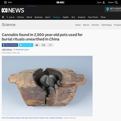 Cannabis found in 2,500-year-old pots used for burial rituals unearthed in China - Science News - ABC News