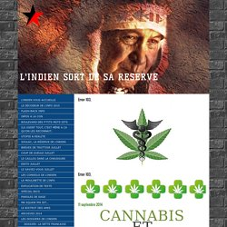 CANNABIS ET SANTE - JJ the BEAR, l'indien sort de sa réserve !