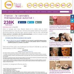 France : le cannabis thérapeutique autorisé !