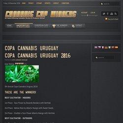 Cannabis Cup Winners - Copa Cannabis Uruguay