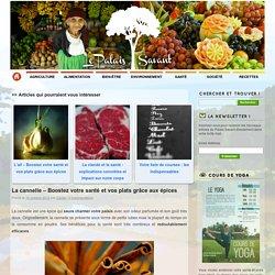 La cannelle - Boostez votre santé et vos plats grâce aux épices