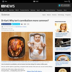 Dr Karl: Why isn't cannibalism more common? - Science News - ABC News